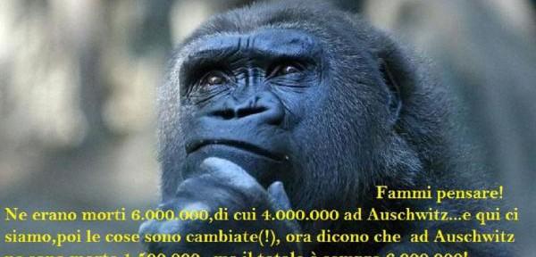 001--Anche-lo-scimpanzè-è-perplesso.jpg